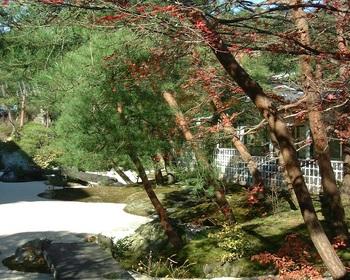 2歓迎の庭(1).JPG
