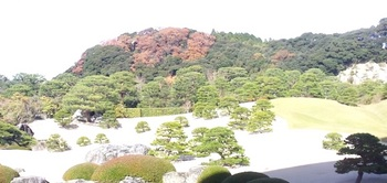22白砂青松庭(2).jpg